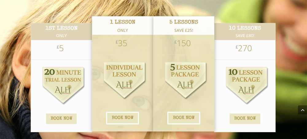 Customers can easily view, book & pay for lessons on-line